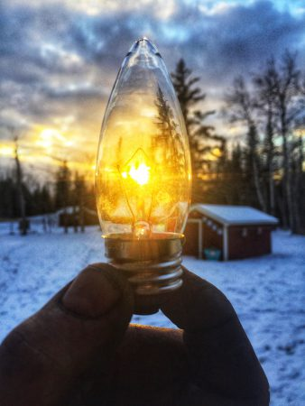 lampje natuur